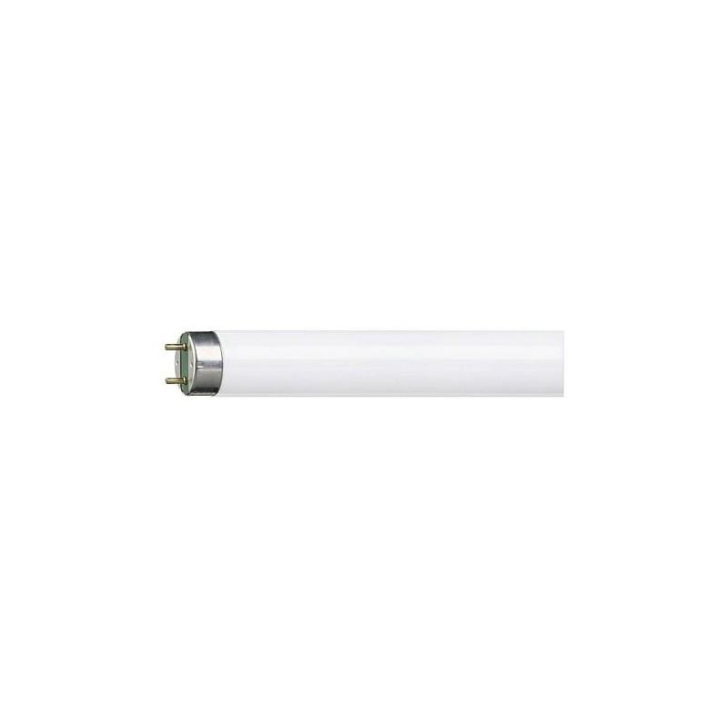 Świetlówka liniowa Pila LF G13 850 36 W