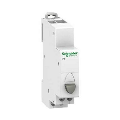 Przycisk modułowy Schneider iPB-poj-NO+NC A9E18033 20A AC