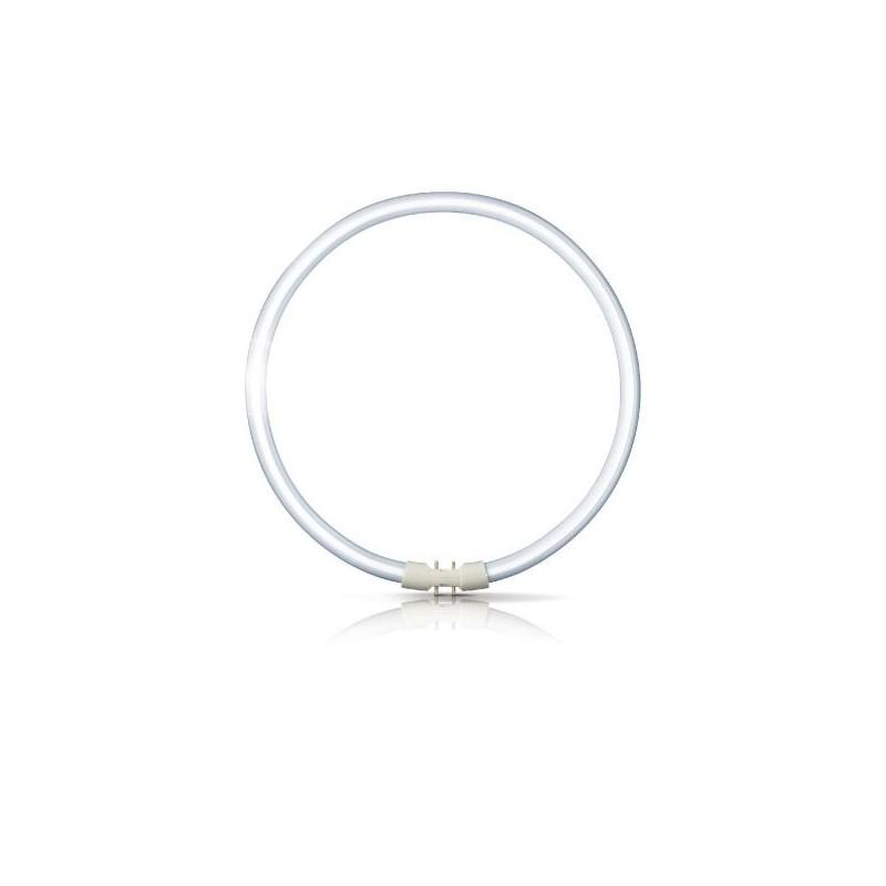 Świetlówka kołowa Philips Master TL5 Circular 827 2GX13 22 W
