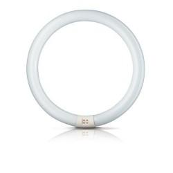 Świetlówka kołowa Philips Master TL-E Circular Super 80 840 G10Q 22 W