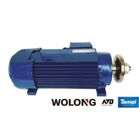 Silnik elektryczny trójfazowy Tamel SPg75-2D 6 kW B3