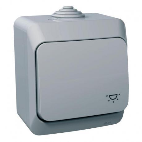 Cedar Plus - Przycisk światło IP44 szary