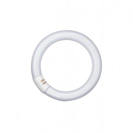 Świetlówka okrągła o średnicy 29mm, z trzonkiem G10Q LUMILUX® T9 C 22 W/827 G10Q 12szt.