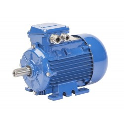 Silnik elektryczny trójfazowy Celma Indukta Sg180M-4 IE1 18.5 kW B3