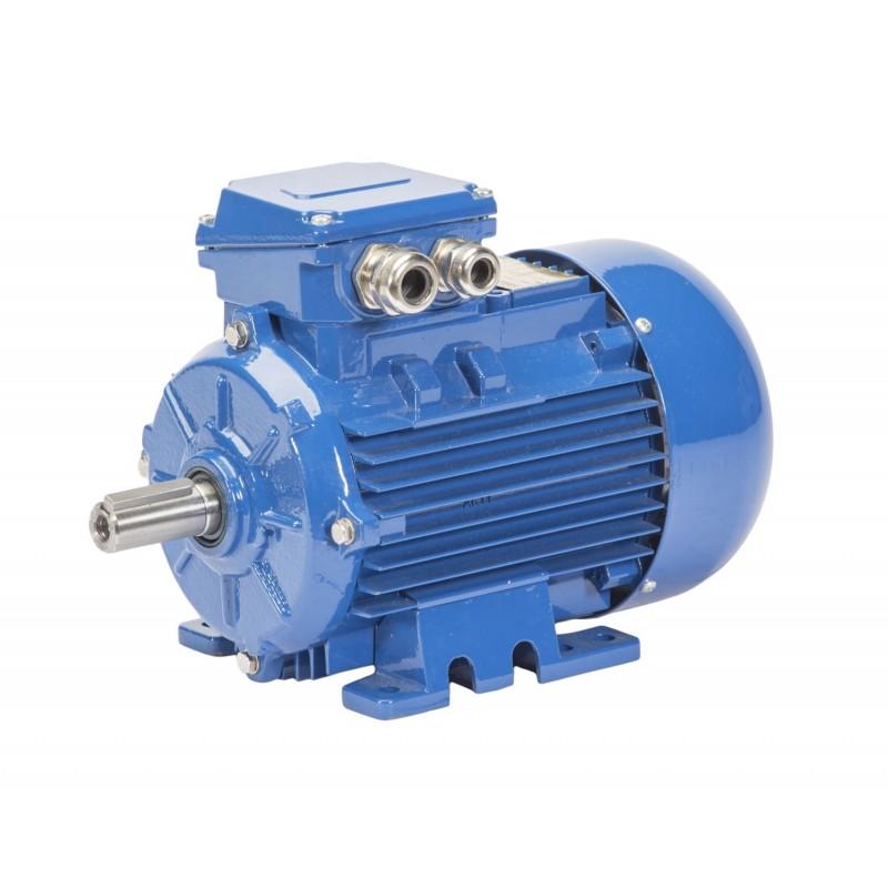 Silnik elektryczny trójfazowy Celma Indukta Sg132M-6B IE1 5.5 kW B3