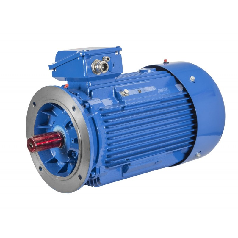 Silnik elektryczny trójfazowy Celma Indukta Sg132M-6B IE1 5.5 kW B5