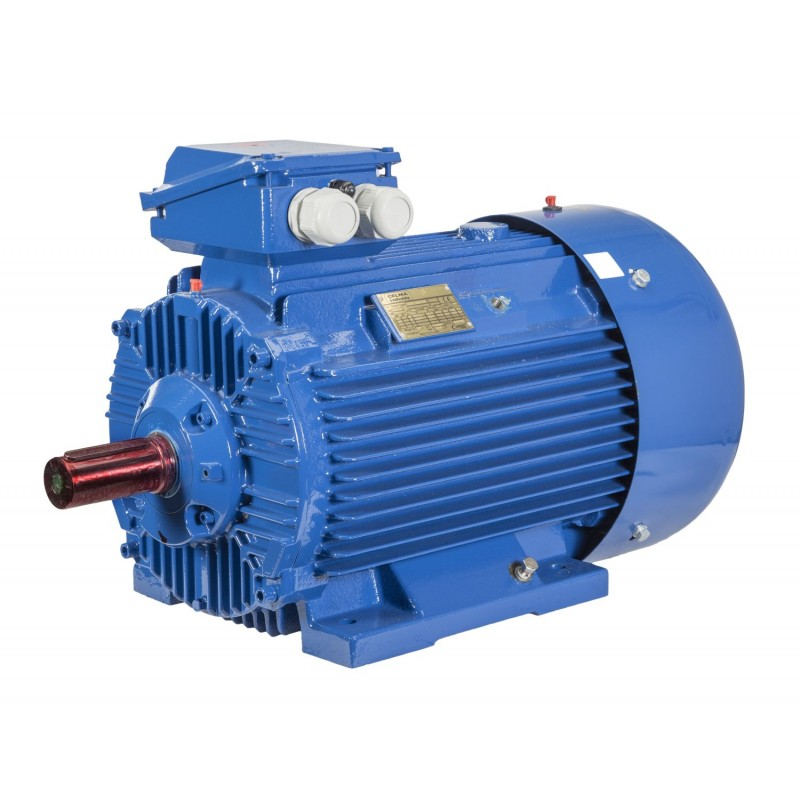 Silnik elektryczny trójfazowy Celma Indukta 2Sg225M 8/6 21/28 kW B3