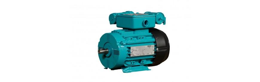 2-biegunowe jednofazowe silniki elektryczne (3000 obrotów)