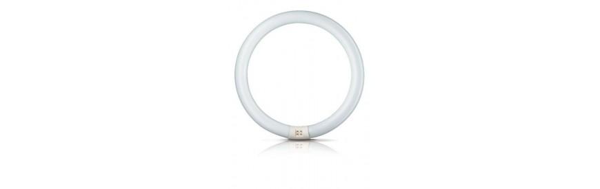 Świetlówki kołowe